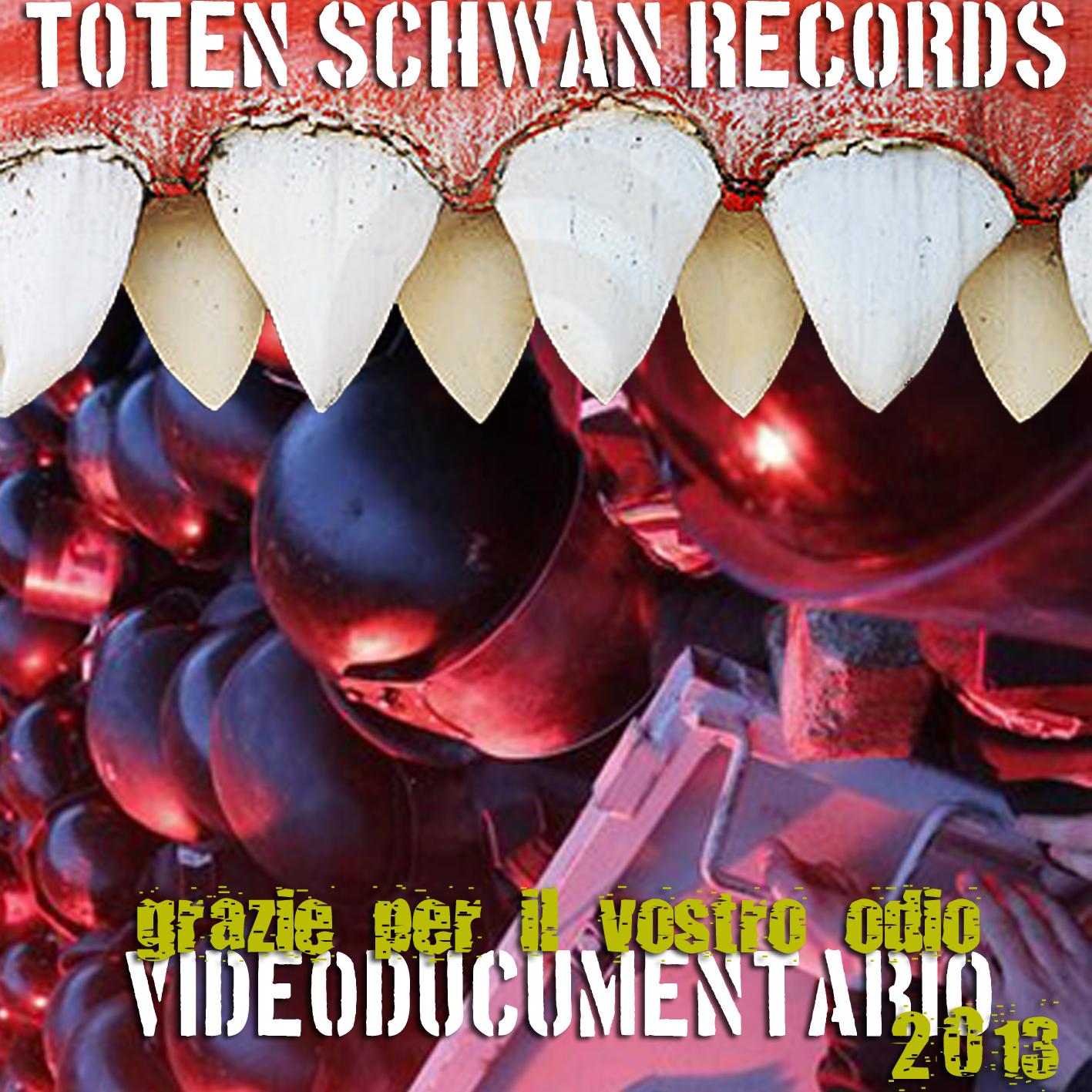 TOTEN SCHWAN videodocumentario